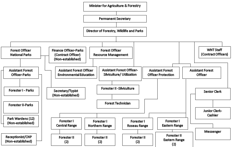 Organisational Chart for the Division of Forestry, Wildlife and Parks